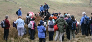Lecture: Sacred Mountains @ Tully Cross | County Galway | Ireland